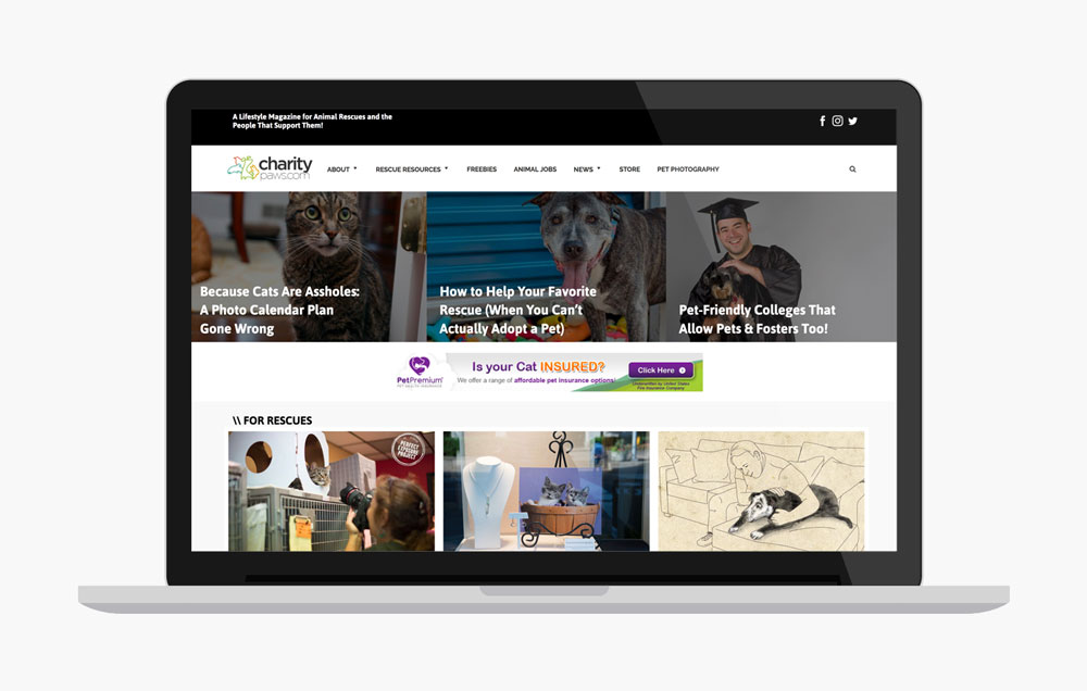 CharityPaws - Wordpress Blog Design