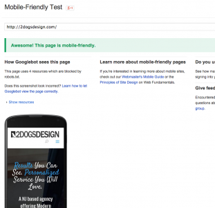 Example of Mobile Friendly Website