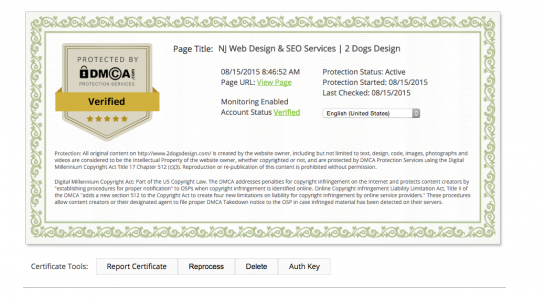 Protecting Blog Content With DMCA