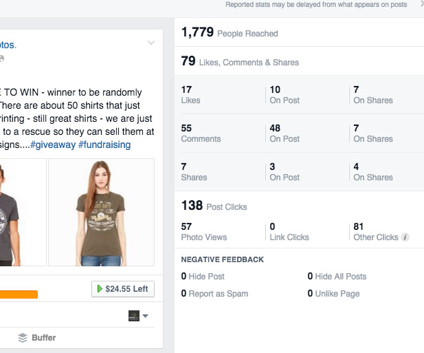 Facebook Insights Preview