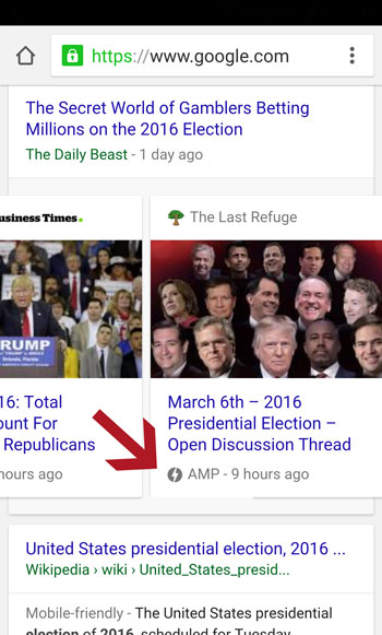 AMP Website Preview In Search Results