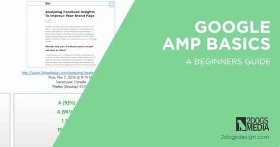 Google amp basics