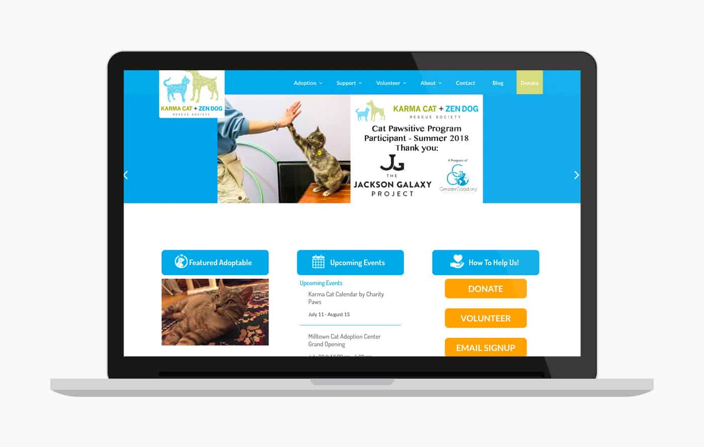 Animal Rescue Website Design - Karma Cat