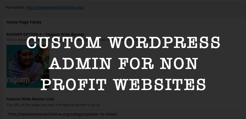 Custom WordPress Admin For Non Profits