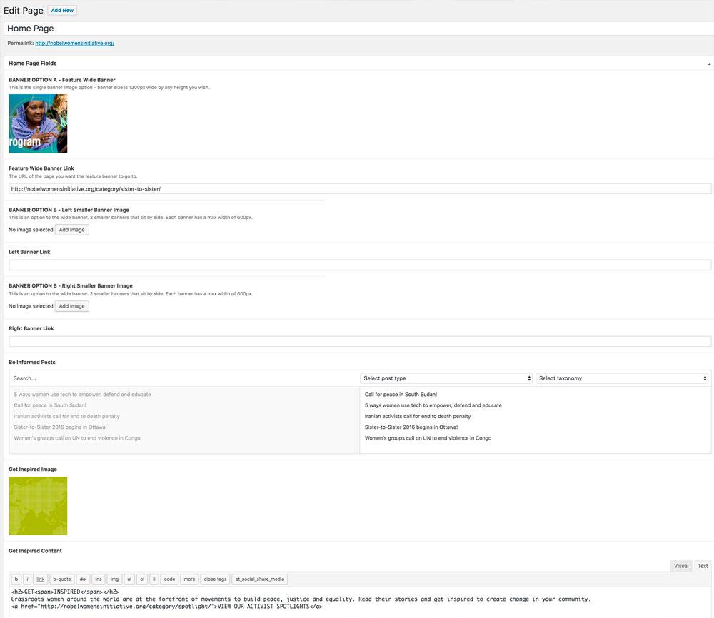 Custom WordPress Admin for Non Profit