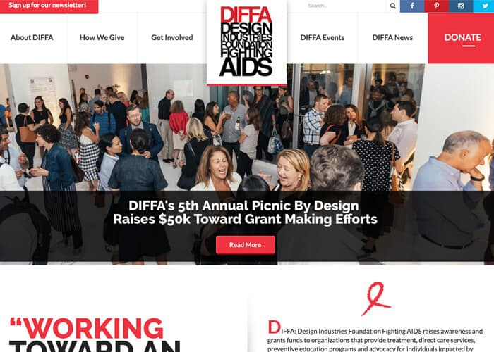 Best Nonprofit Website Diffa
