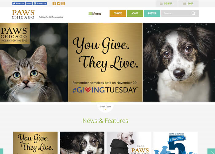 Best Nonprofit Website Design - Paws Chicago