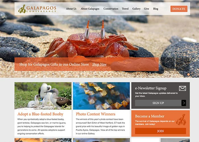 Best Nonprofit Website Galapagos