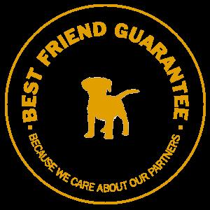2 Dogs Media Best Friend Guarantee