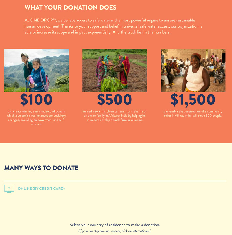 OneDrop Donation Page Example