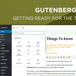 Gutenberg Editor - Getting Your Website Ready