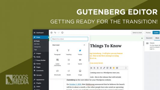 Gutenberg Editor - Getting Your Website Ready