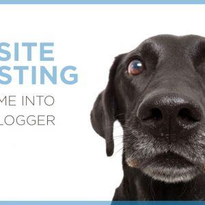 Website Investing