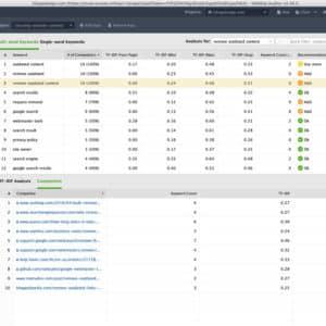tf idf in website auditor