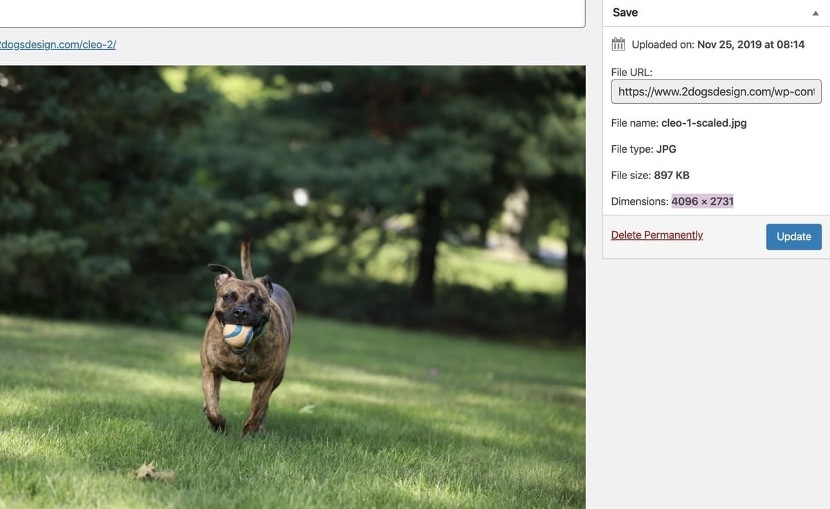 Function to change big image size in WordPress 5.3 results