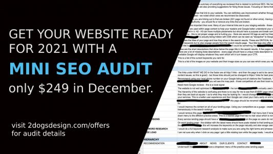mini seo audit