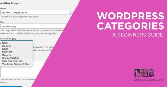 beginners guide to WordPress categories